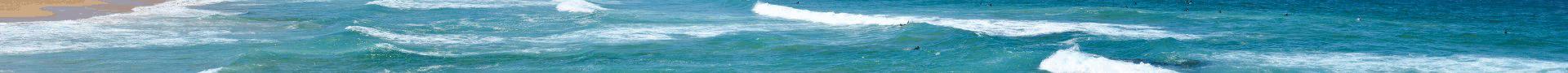 banner-ocean_shore.png.ea2d6431c98d509478e988ac0a440fdc.png